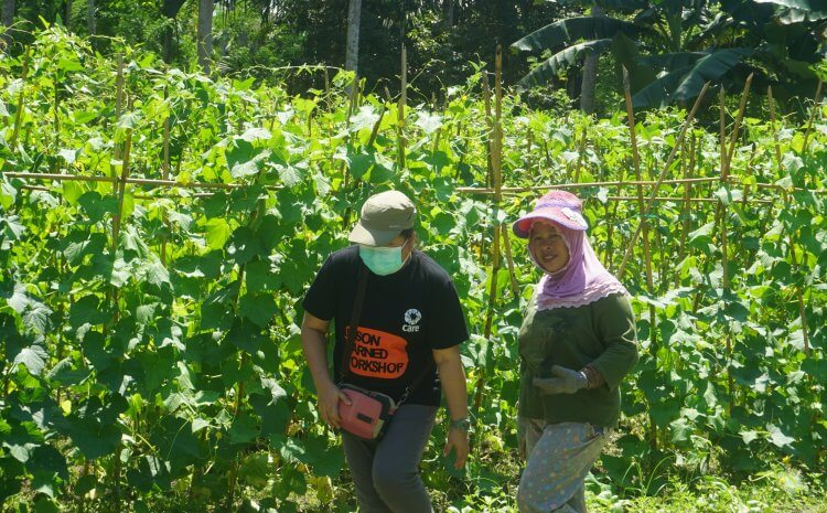 ACHIEVING FOOD SECURITY IN CENTRAL SULAWESI